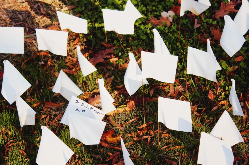 Rows of small white flags planted in the ground.